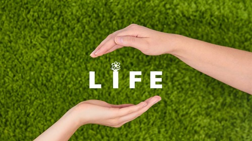 生活援助とは?目的や在宅生活を支えるホームヘルパーの仕事内容について