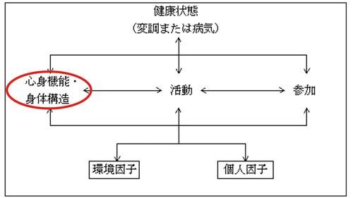ICFの心身機能・身体構造